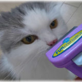 猫の毛が取れ放題! ファーミネーターの威力が想像以上にすごかった!