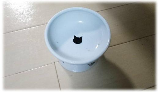 猫がドライフード食べてくれない事件に悩む