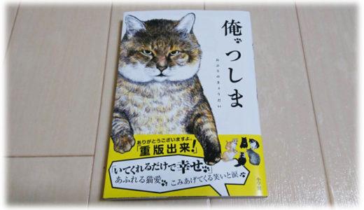 猫好きに読んで欲しい。おすすめ猫マンガ3選