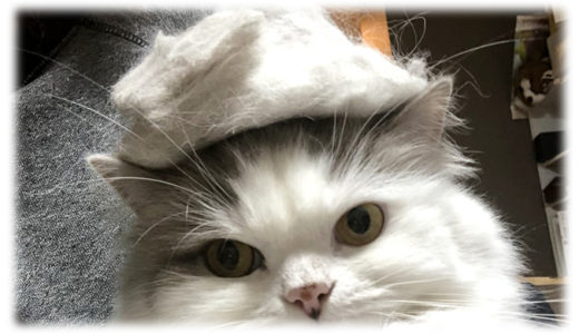 猫の毛で作る猫の帽子作り〜とんがり帽子編〜