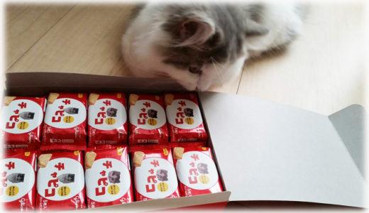 愛猫の写真で作るオリジナルラベルのお菓子