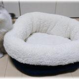 冬に備える猫の防寒グッズはこれ! ニトリの「Nウォーム」でほかほかに!