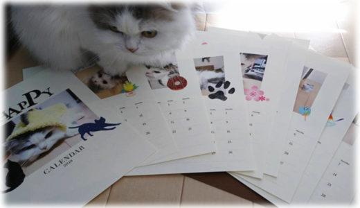 愛猫の写真でオリジナルカレンダーを作る