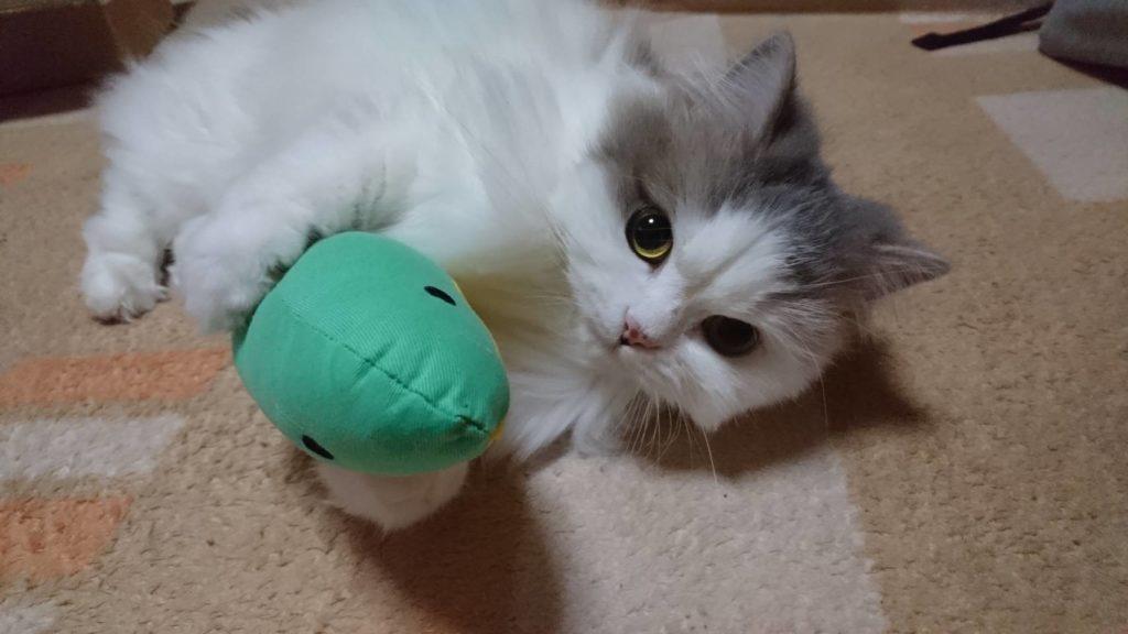 猫のおもちゃ「けりぐるみ」を一心不乱に蹴り蹴りする愛猫の姿が悶絶級だった!