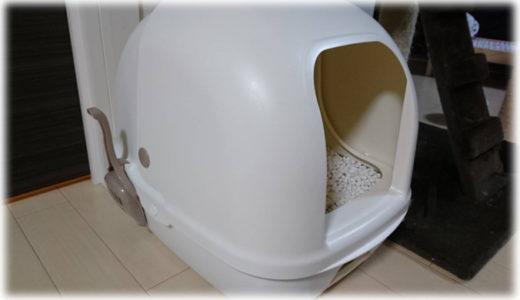 いつもトイレは清潔に。猫はとってもキレイ好き!