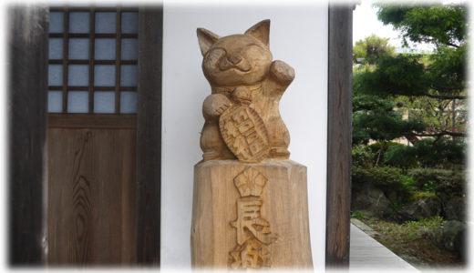 写真集『てらねこ』で話題。猫に会えるお寺『那須の長楽寺』に行ってみた!