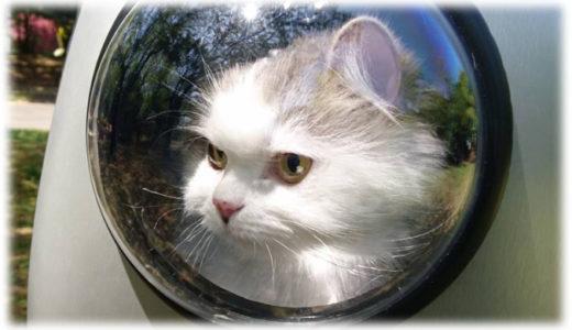 猫と一緒に宇宙へ冒険する気分!?宇宙船リュックが可愛すぎ!