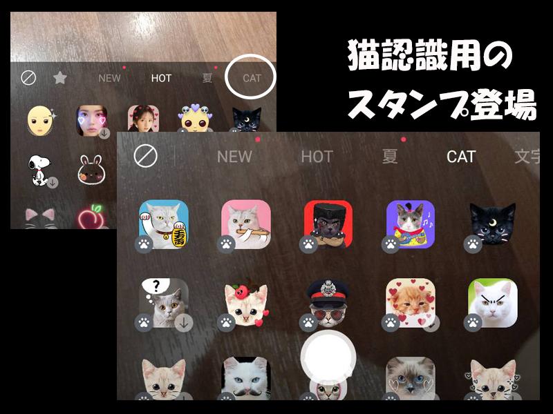 カメラが猫を認証する時代がやってきた。写真加工アプリ「snow」が面白すぎ!