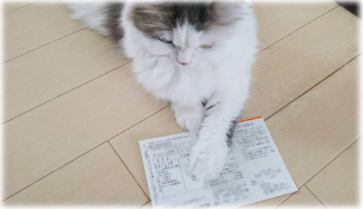 エアコンフル稼働も怖くないと知った猫飼いの2019年夏の電気代