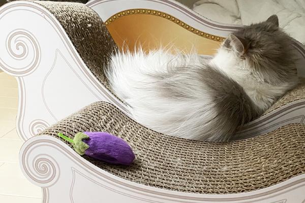 猫の爪とぎ「カリカリーナ」が最高すぎる……! 猫飼いを感動させた魅力に迫る!